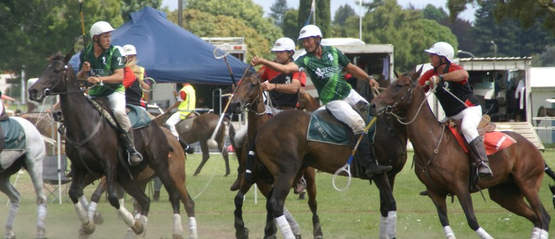 New Zealand Polocrosse Roke & Rockwood Trophies