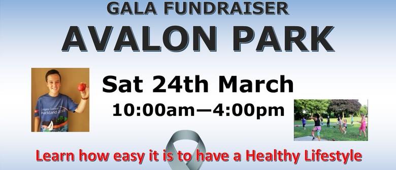 Healthy Lifestyle Gala Fundraiser