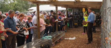 Rare Breeds Auction and Heritage Lifestyle Day
