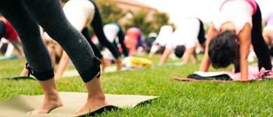 Yoga & Music In the Park