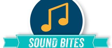 Sound Bites Summer Music Series –  Raven Mavens Quartet