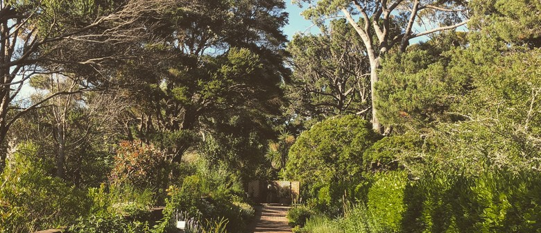 Guided Walk: Pine Hill Path and the Herb Garden