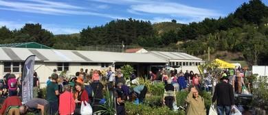 Parks Week – Berhampore Nursery Open Day