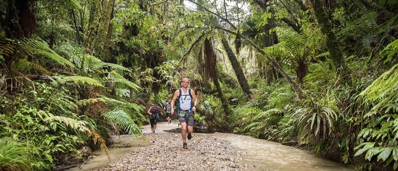 Waitomo Trail Run