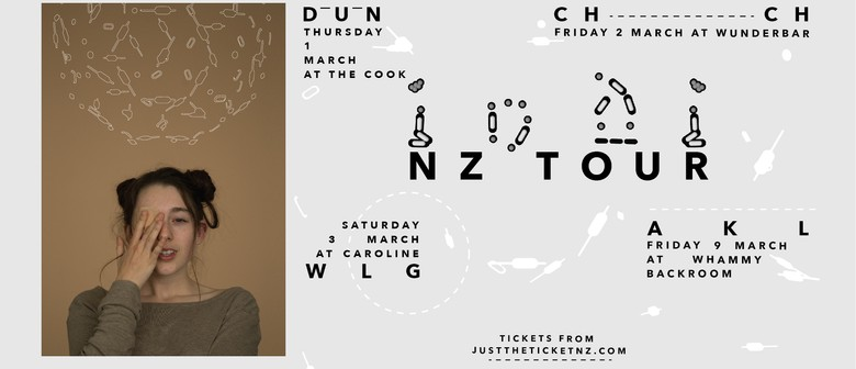 indi NZ Tour with Waterfalls, Ludus