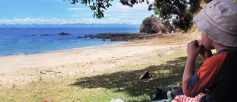 Family Volunteer Day On Rotoroa Island