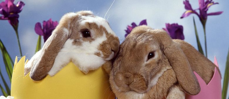 Easter Fun Market