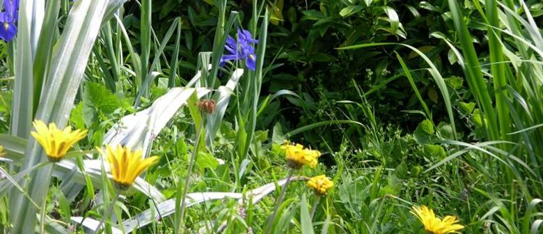 Ohariu Valley Garden Ramble