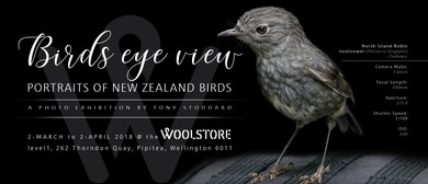 Birds Eye View – Portraits of New Zealand Birds