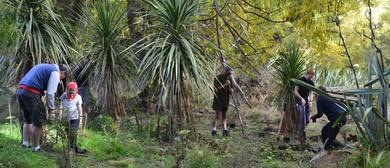 Public Native Tree Planting Day