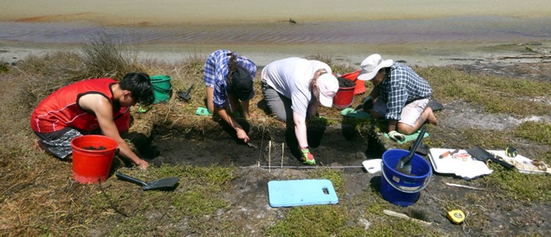 Papanui Inlet Archaeology