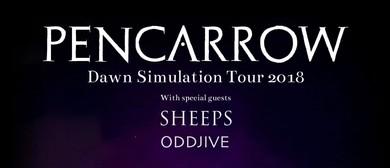 Pencarrow with Sheeps & Oddjive