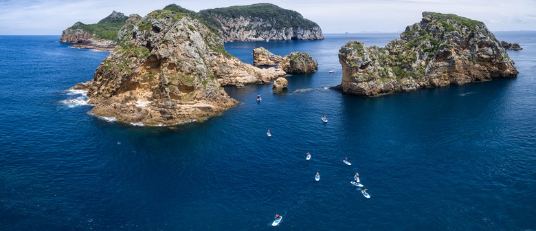 Poor Knights Islands Paddle Boarding - Wellness On Water