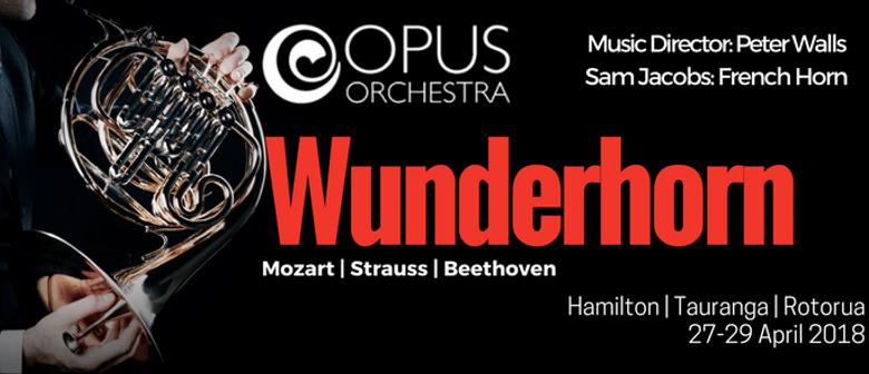 Opus Orchestra - Wunderhorn