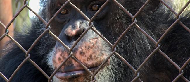Reel Earth: Unlocking The Cage Screening