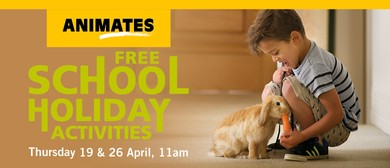 Animates New Plymouth – School Holiday Activities