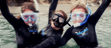 Snorkel Junky 3 Day Holiday Programs