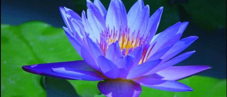 Psychology, Buddhism and A Fulfilling Life
