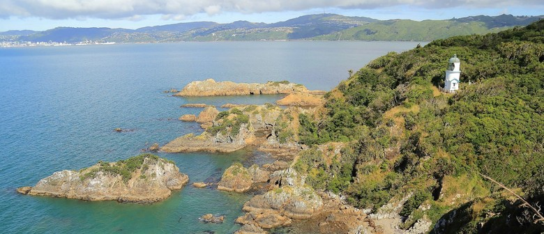 Archaeological Tour of Matiu/Somes Island