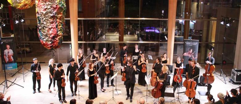 Pettman Chamber Orchestra