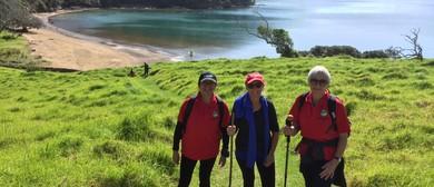 Pukehuia and Whangamumu Whaling Walk