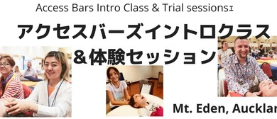 Access Bars Intro Class & Trial Session
