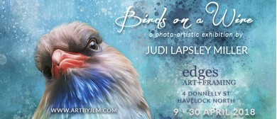 Birds On a Wire - A Photo-artistic Exhibition
