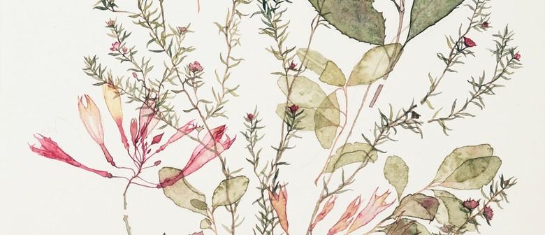 Exploring Watercolour With Kohl Tyler-Dunshea