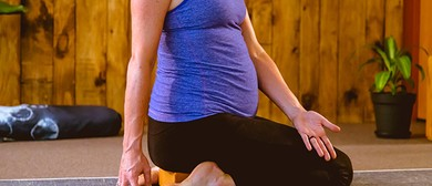 Pregnancy Yoga Course - Term 5