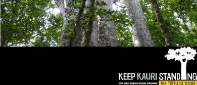 Kauri Dieback Public Talk