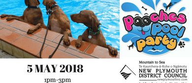 Pooches Pool Party