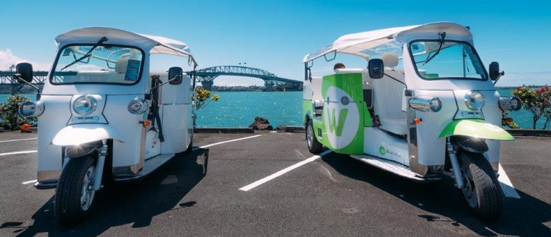 100% Electric Tuktuk Private Cultural and Heritage Tours