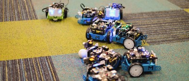 SMINKS LABS Coding and Robotics mBot Workshop