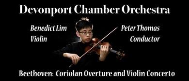 Devonport Chamber Orchestra - Beethoven Violin Concerto