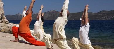 Level 1 - 2 Yoga Class
