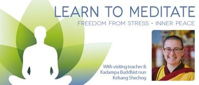 Learn to Meditate Workshops