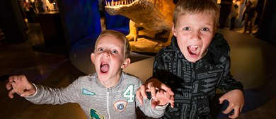 Permian Monsters: Palaeontology Experience