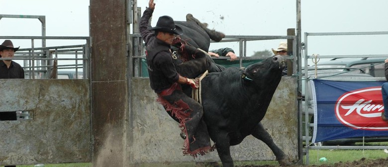 Paeroa Battle of the Bulls 2010