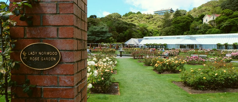 Gardens Day Guided Walk: The Lady Norwood Rose Garden