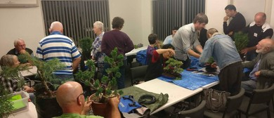 Eastern Bonsai Club Monthly Meeting