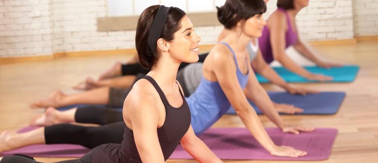 Stott Pilates Intensive Matwork Plus Course