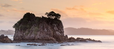 Bay of Islands Photography Workshop
