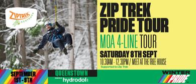 Winter Pride '18 - Ziptrek Pride Tour Moa 4 Line