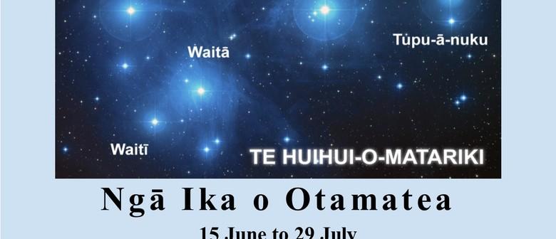 Ngā Ika o Otamatea - Matariki 2018