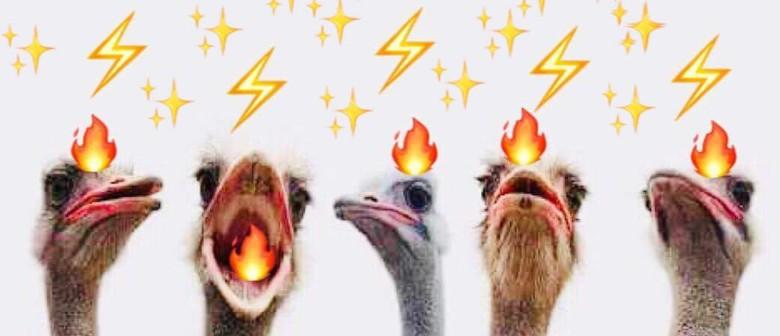 The Ostrich 5