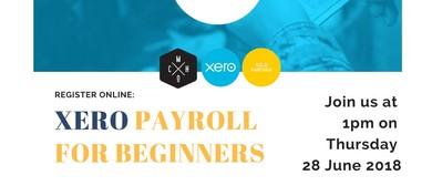 Xero Payroll Training for Beginners
