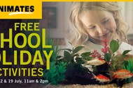 Animates Napier – School Holiday Activities