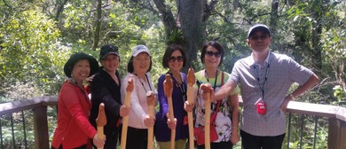 Opua Forest Papatuanuku Earth Mother Tour - Short Walk 11A