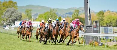 Hawke's Bay Hunt Raceday