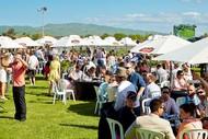 Bostock NZ Spring Racing Carnival - Livamol Classic